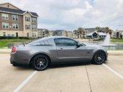 Mustang Pic 01.jpg